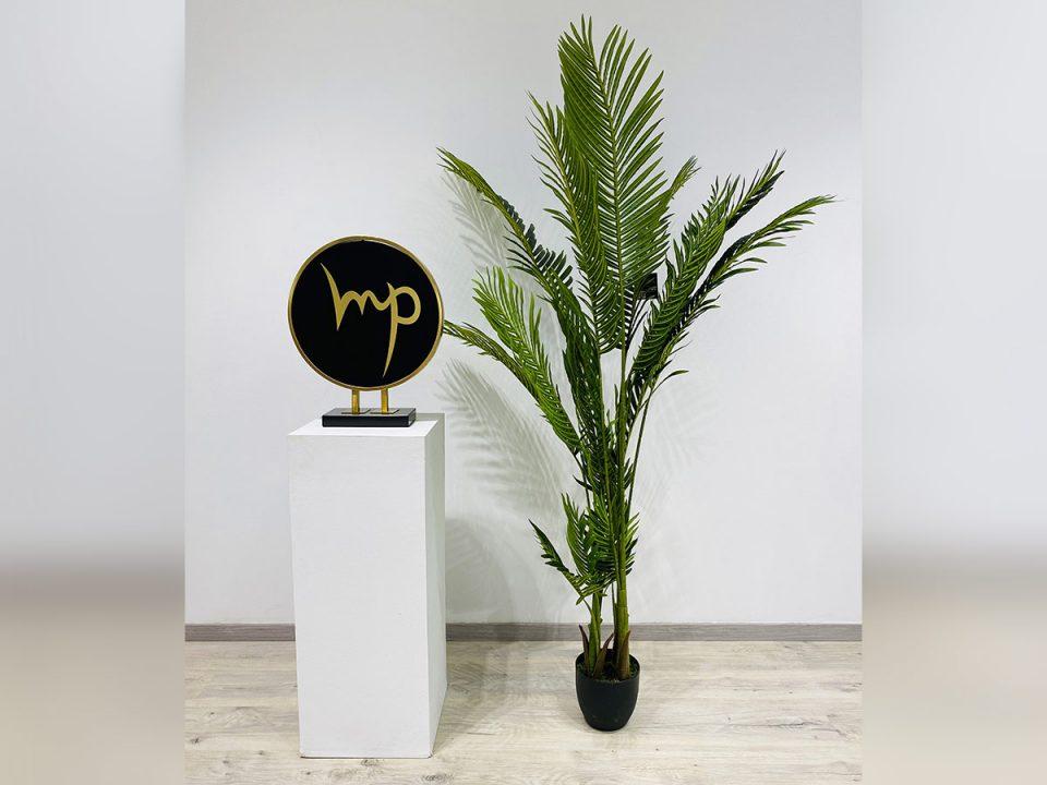 Plante_20