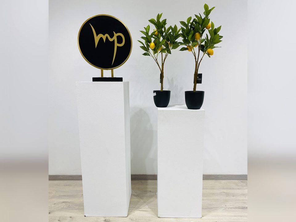 Plante_29